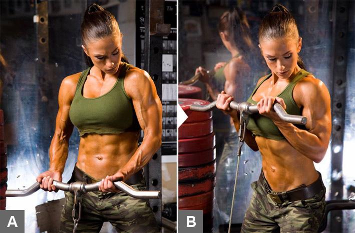 biceps3.jpg