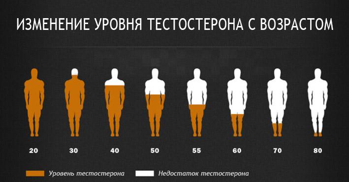 тестостерона при физических нагрузках Выработка