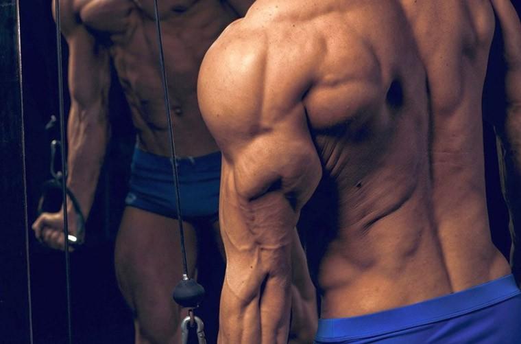 Основные упражнения для тренировки трицепсов
