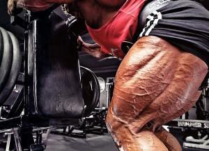 Бицепс бедра - упражнения, анатомия, особенности тренировки
