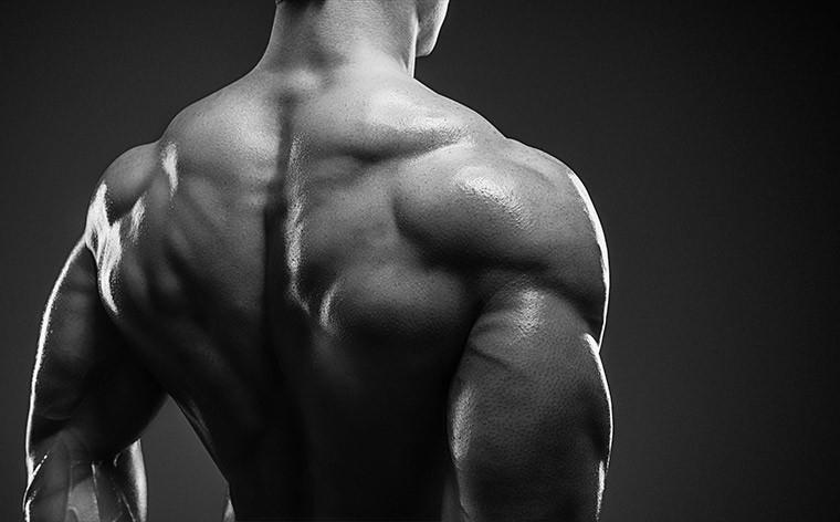 Как накачать задние дельты - обзор лучших упражнений