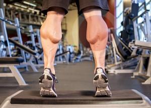 Икроножные - упражнения, особенности тренировки, анатомия