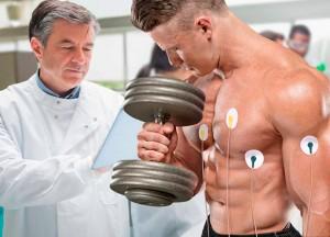 Исследования ученных в области спорта, фитнеса и бодибилдинга