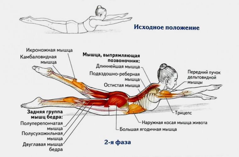 Упражнение «Плавание»