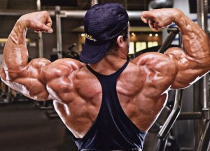 Спецкомплекс для тренировки плеч