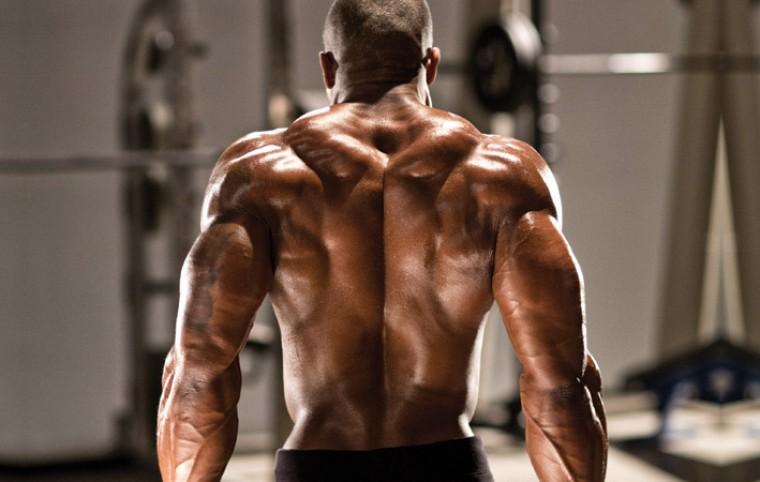 Поясница - упражнения, анатомия, особенности тренировки