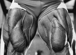 Квадрицепс - упражнения, особенности тренировки, анатомия