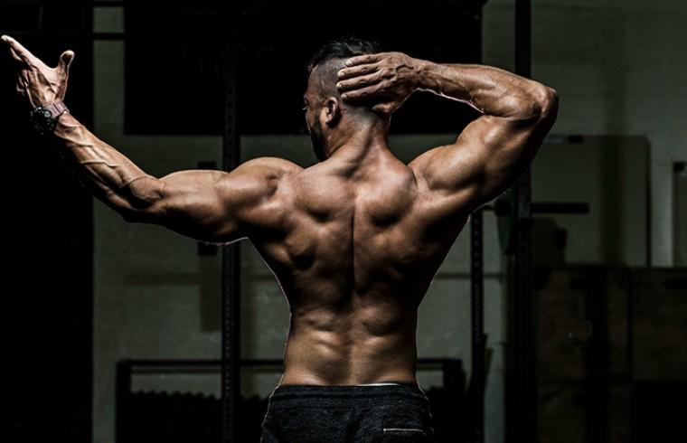 Лучшие упражнения для мышц спины