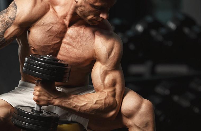 Силовые тренировки жиросжигание